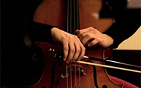 Cello Rental Reservation & Deposit:  Protege Level
