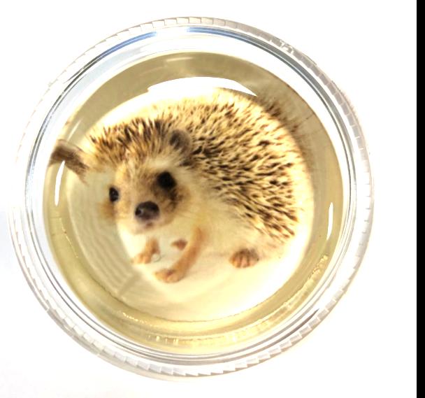 Harriett the Hedgehog Magic Rosin