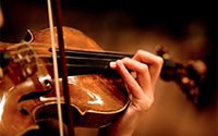 Violin Rental Reservation & Deposit:  Artist Level