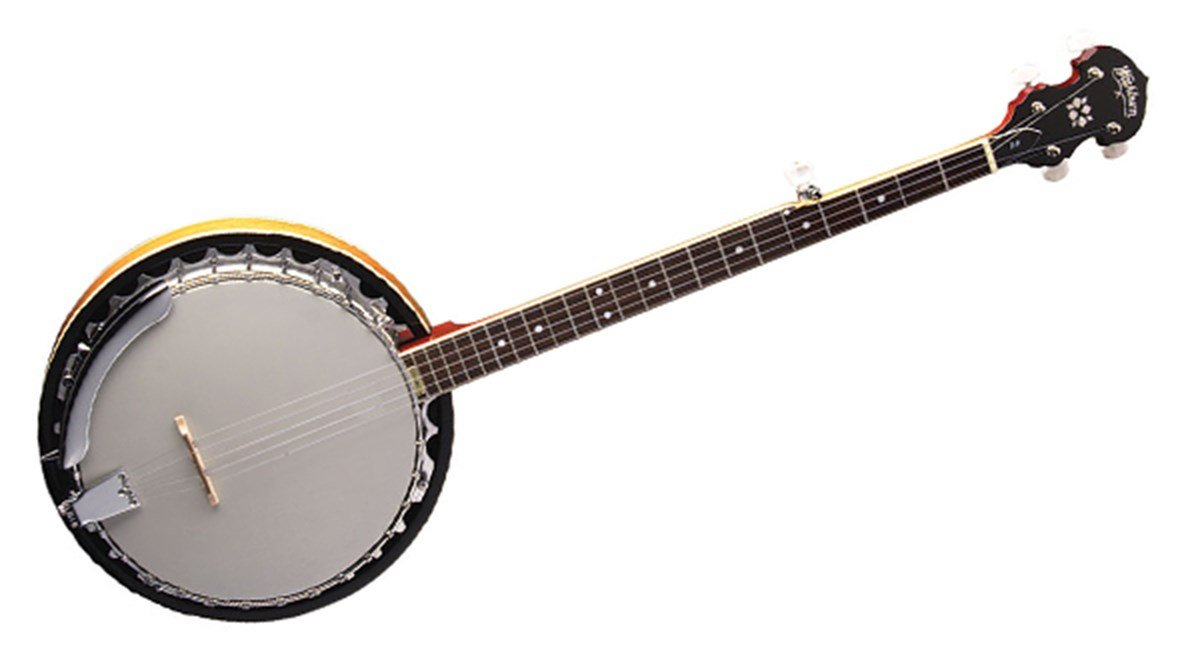 Washburn B-9 5-string Banjo - Natural
