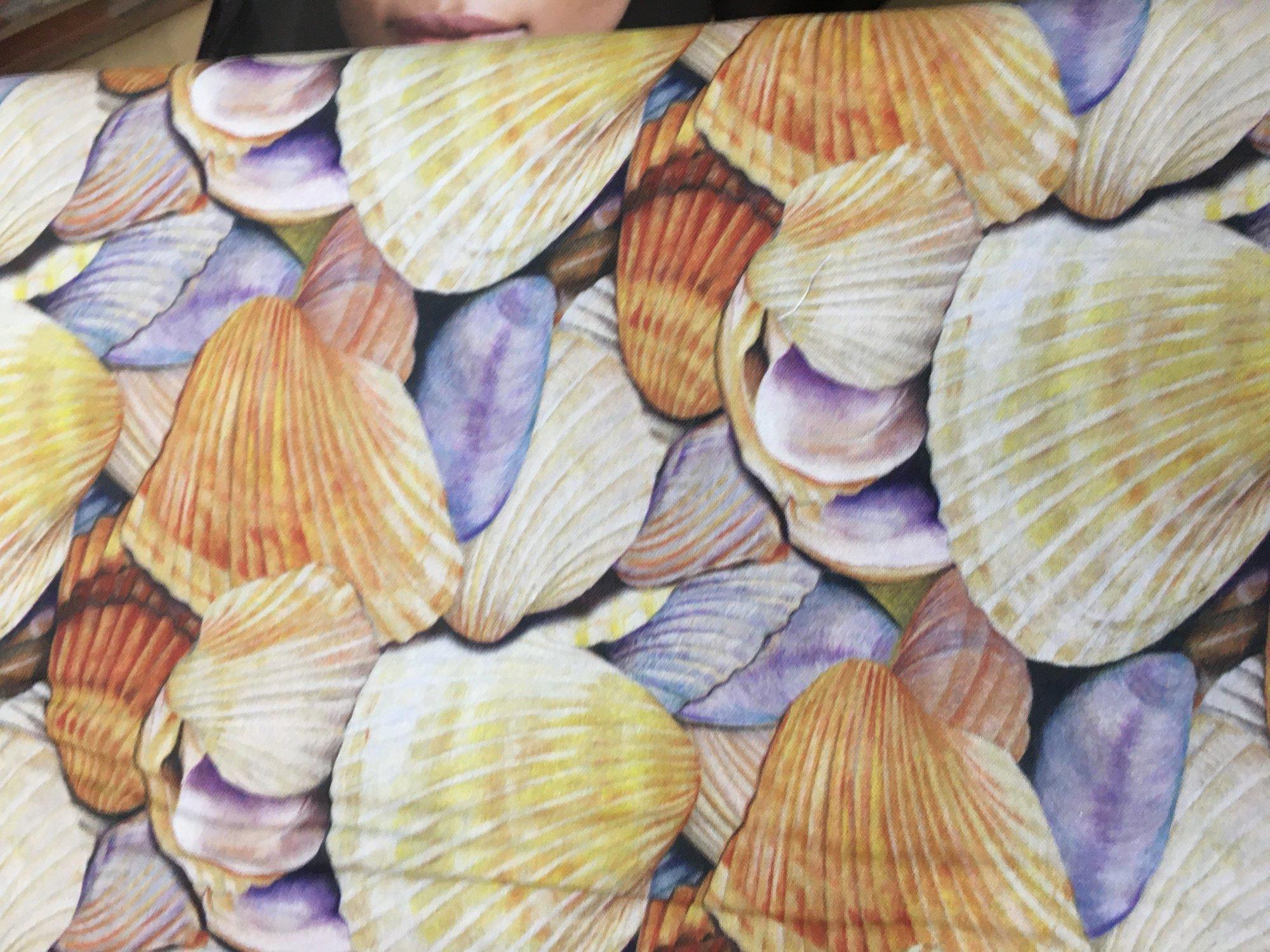 Sea Shells Allover