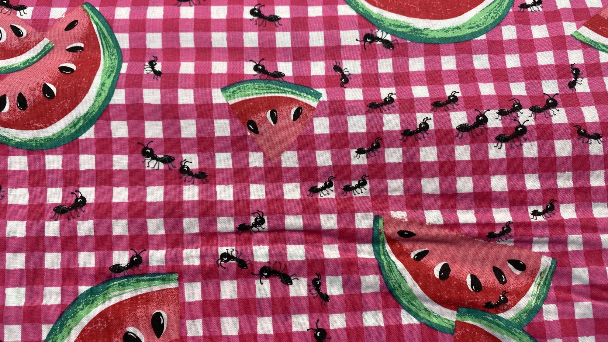 Summer Picnic Watermelon and ants