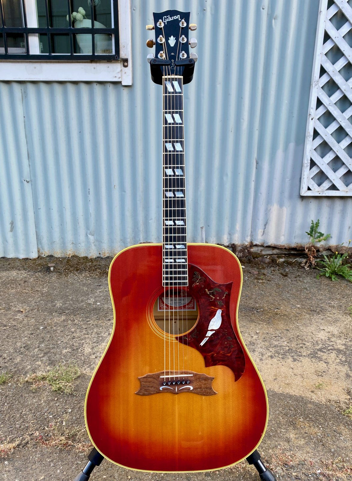 GIBSON DOVE CUSTOM 1989 WITH HARD CASE