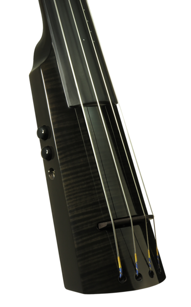 Electric Upright Bass WAV Series