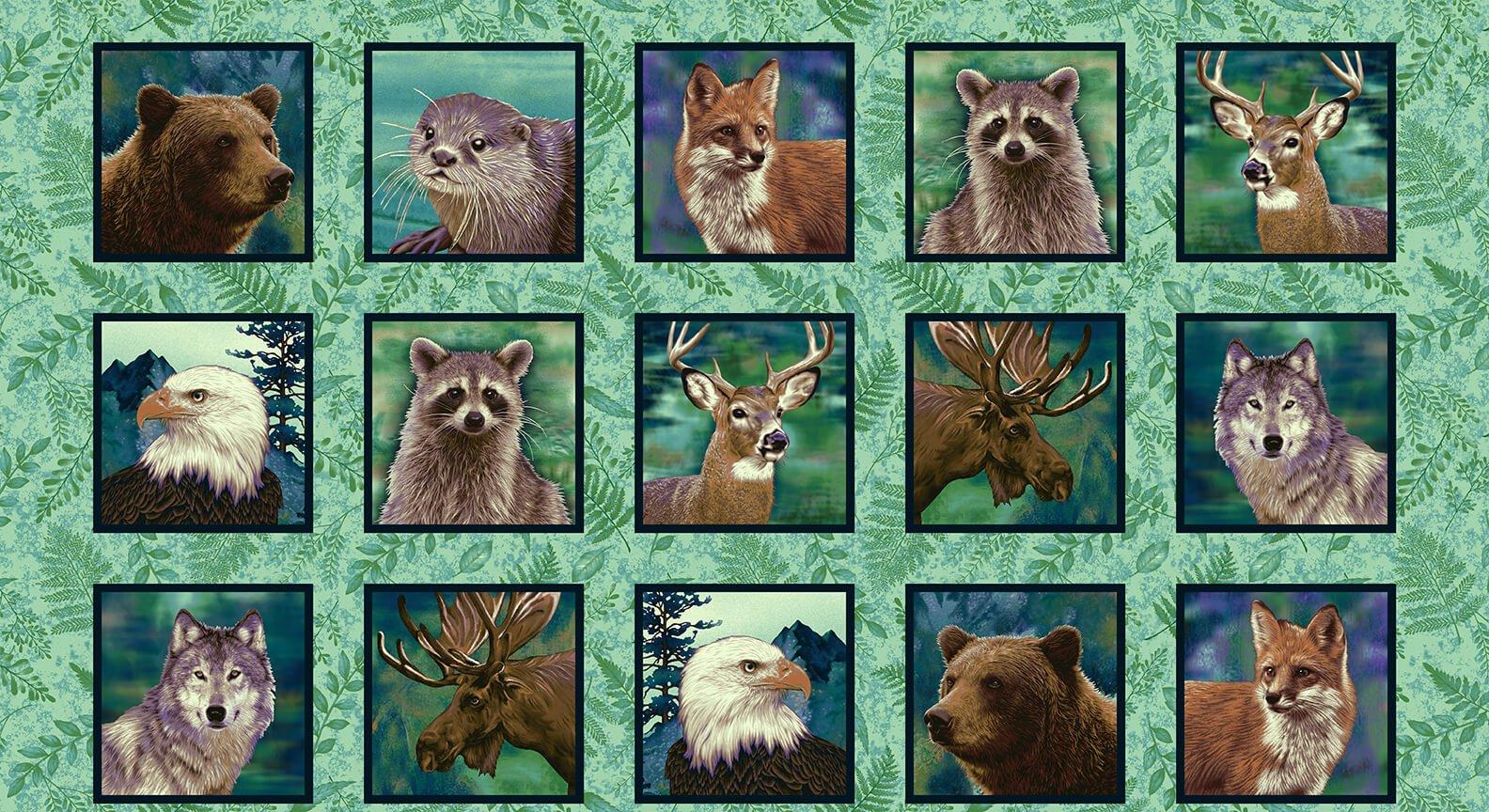 Animal Blocks, Spruce