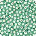 Teapot Garden  Aloe 9533