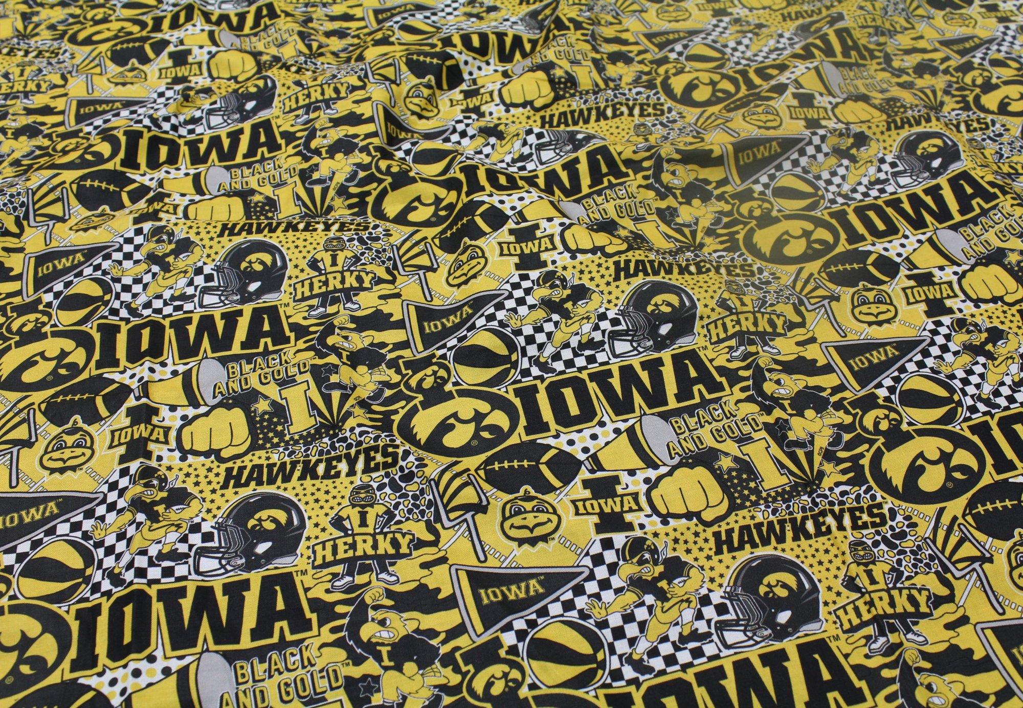 Iowa  IA1165
