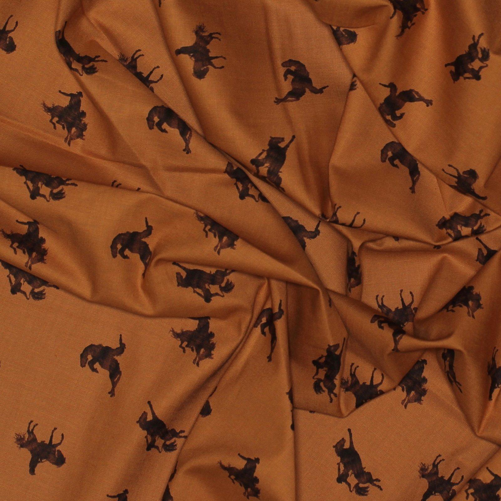 Back of the Chutes - Broncos - Sienna - Hugh Cabot