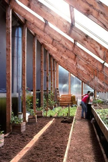 People Inspecting Crops in The PEI Ark Greenhouse