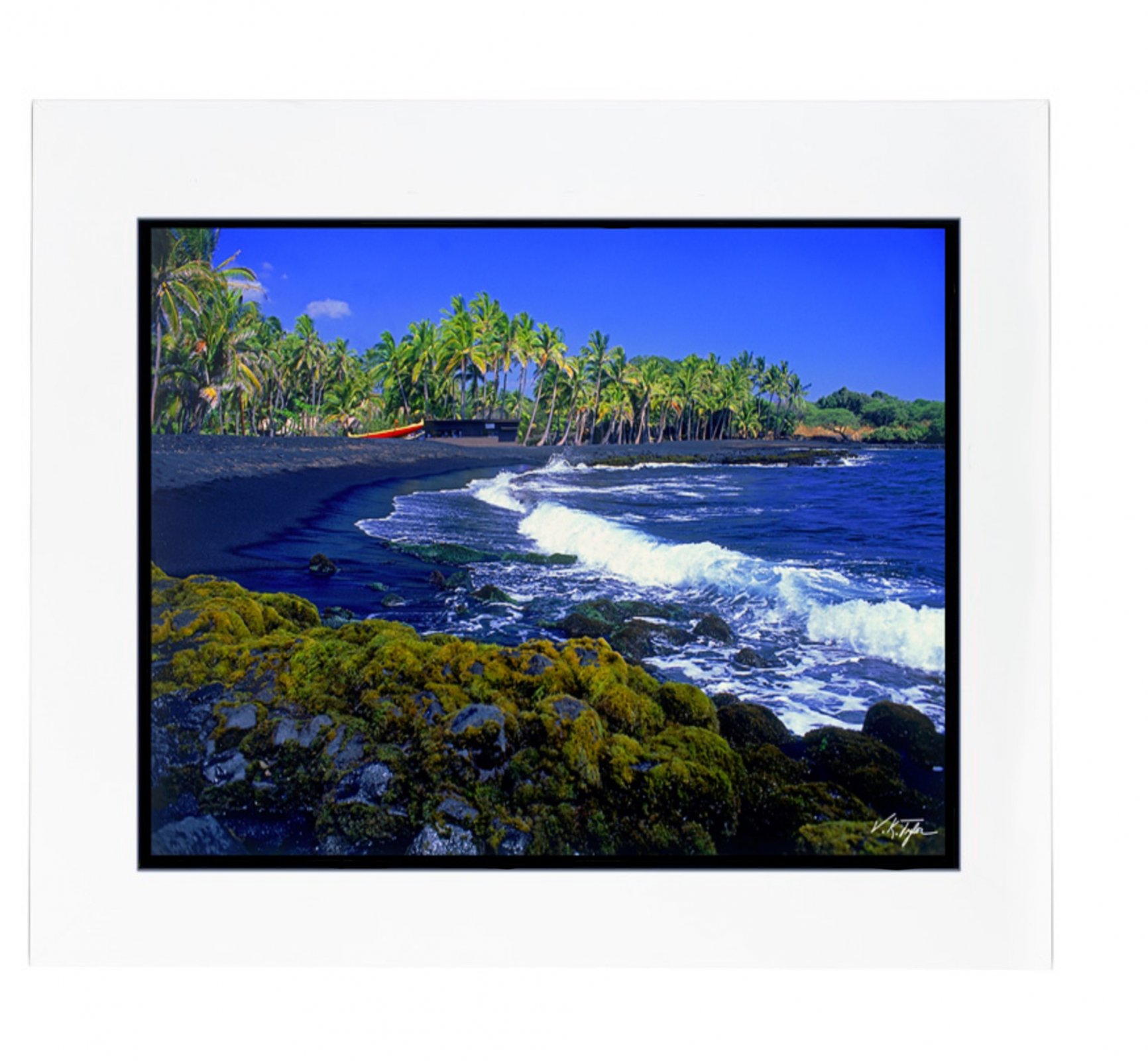 Photo > Punalu'u Black Sand Beach