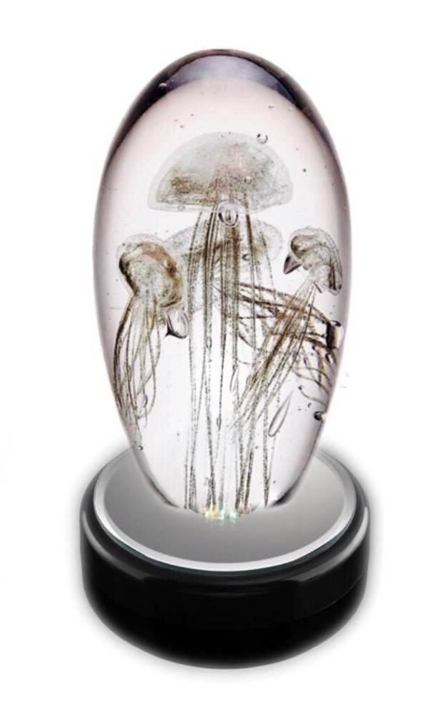 Statue > Jellyfish Glass with LED light box (Gold)