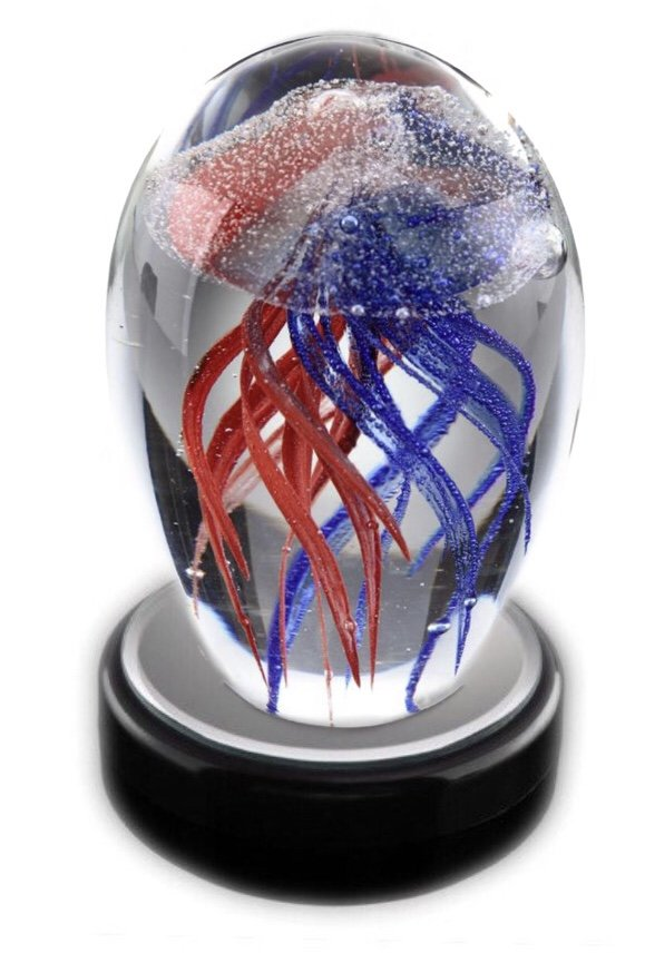 Statue > Jellyfish Glass with LED light box (Blue & Red)