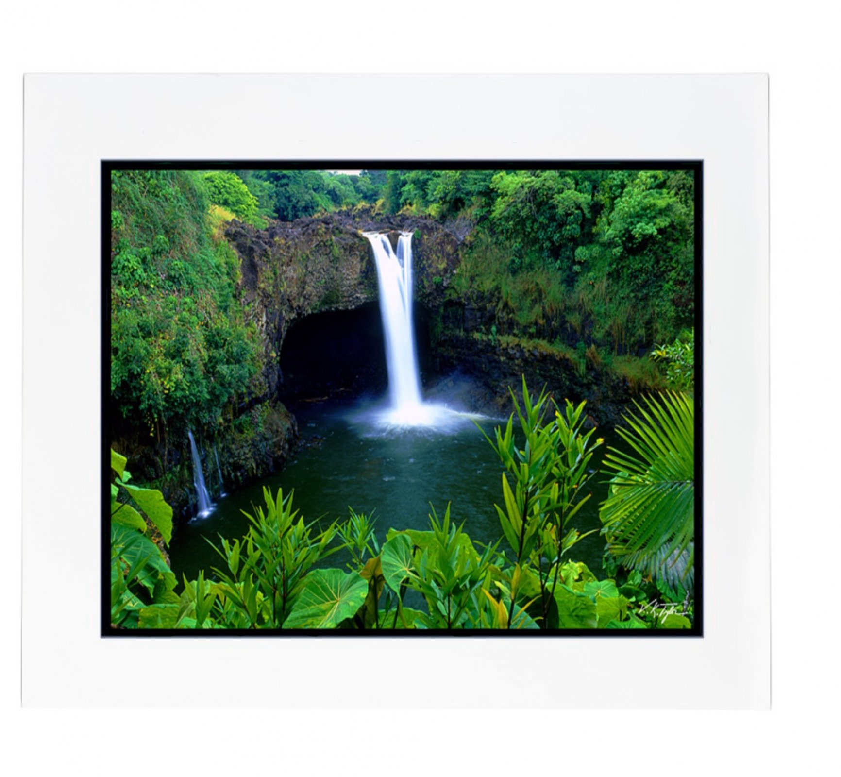 Photo > Rainbow WaterFall with Foliage
