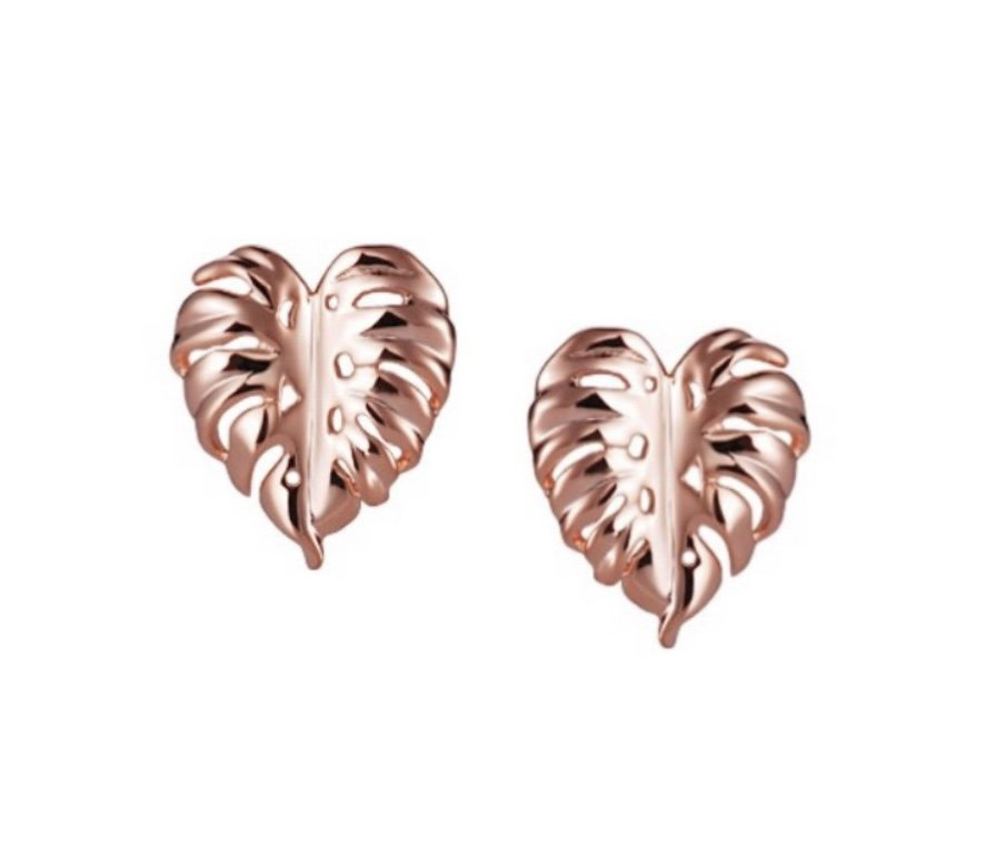 Monstera Leaf Earring (14kt Gold)
