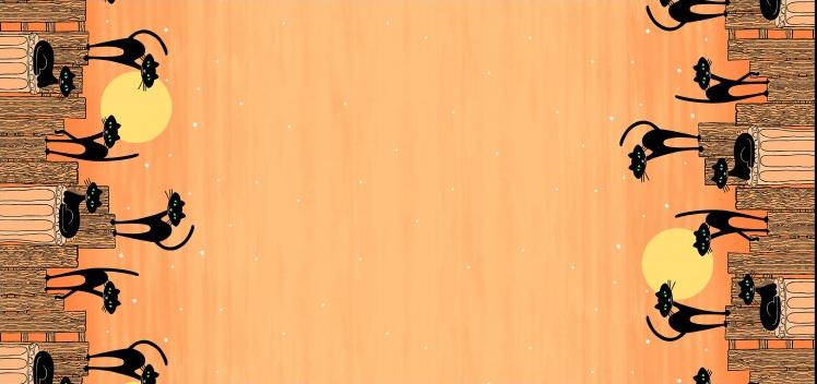 Stray Cat Strut Orange