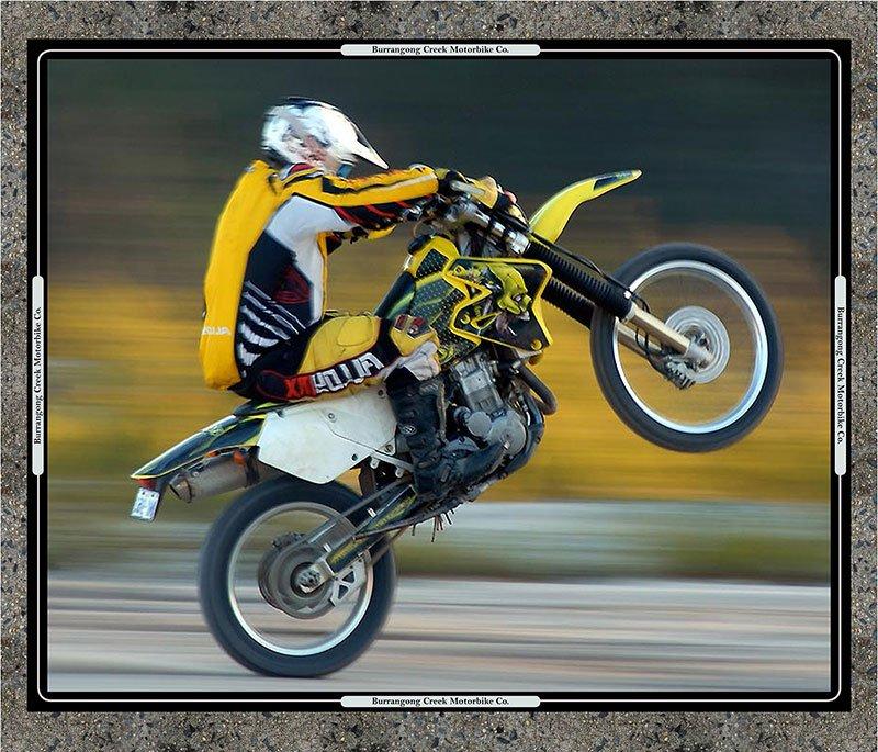 Motorbikes Panel