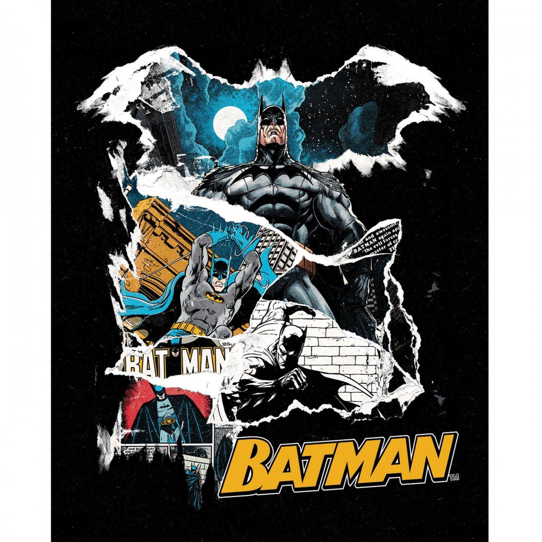 Batman 80 Years Panel