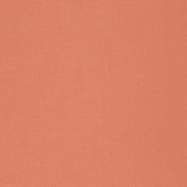 Robert Kaufman - Cabbage Rose Solid Ginger