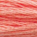 DMC Stranded Cotton 3341