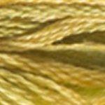 DMC Colour Variations 4070