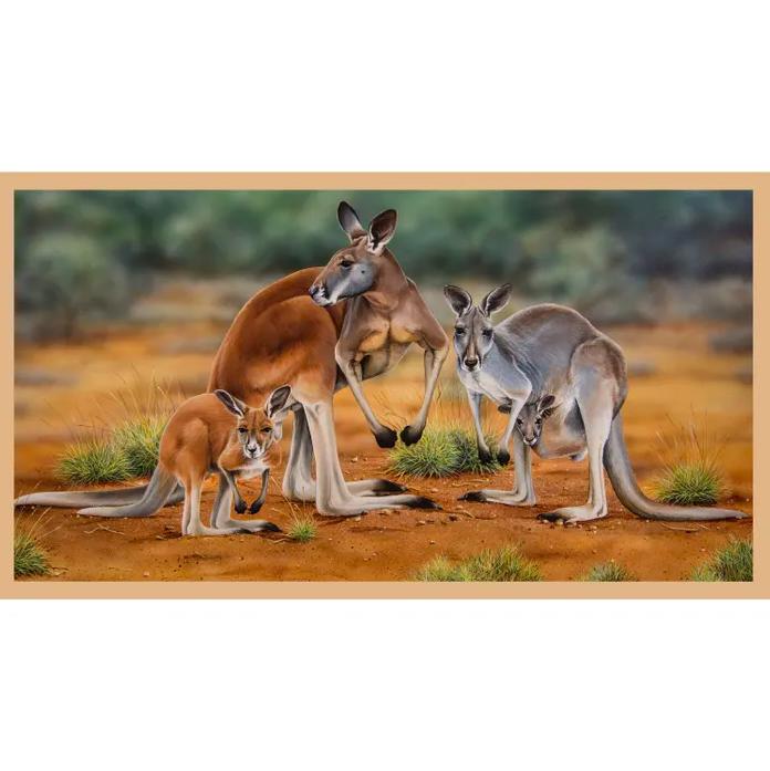 Wildlife Art - Kangaroos No 3 Panel