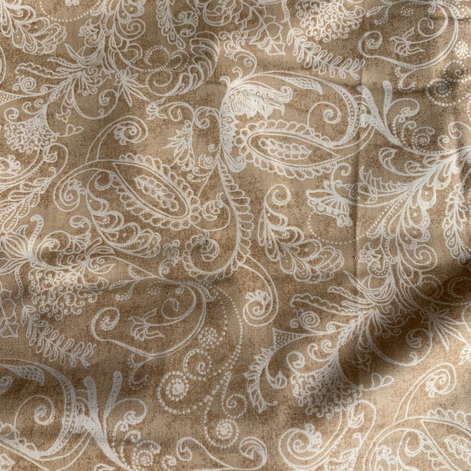 Complementary Dotty Paisley - Fawn 108