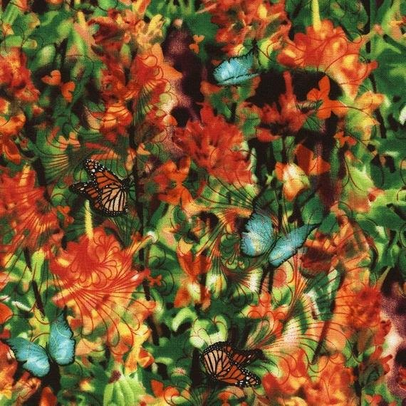 Wildflower - Indian Paintbrush - Garden