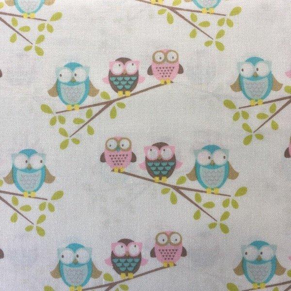 Woodland Walk - Owls