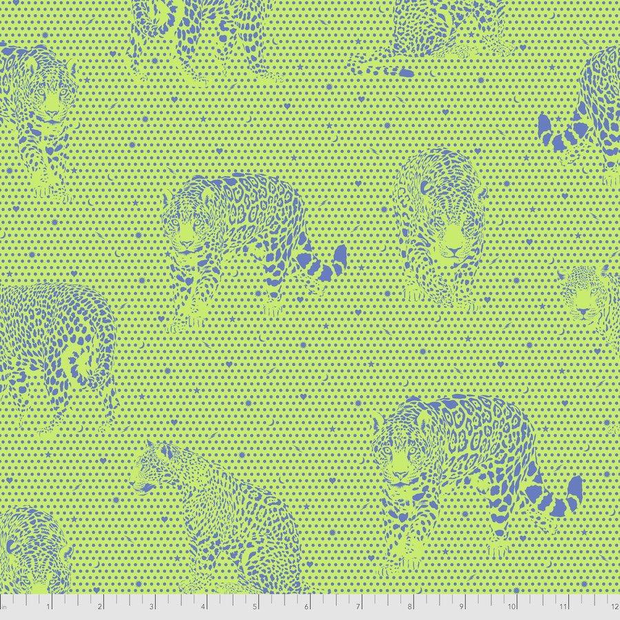 PRE-ORDER - Daydreamer - Lil Jaguars - Kiwi