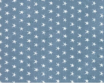 Branded by Sweetwater for MODA - Blue Jean # 5781-16