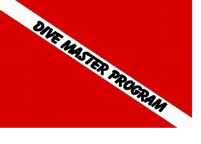 NAUI Divemaster Course