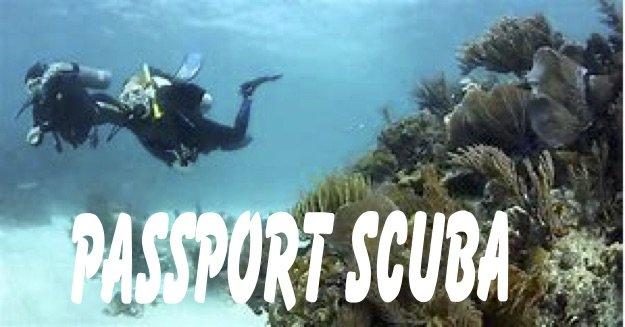 Passport Scuba Diver