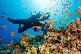 NAUI Master Scuba Diver Course