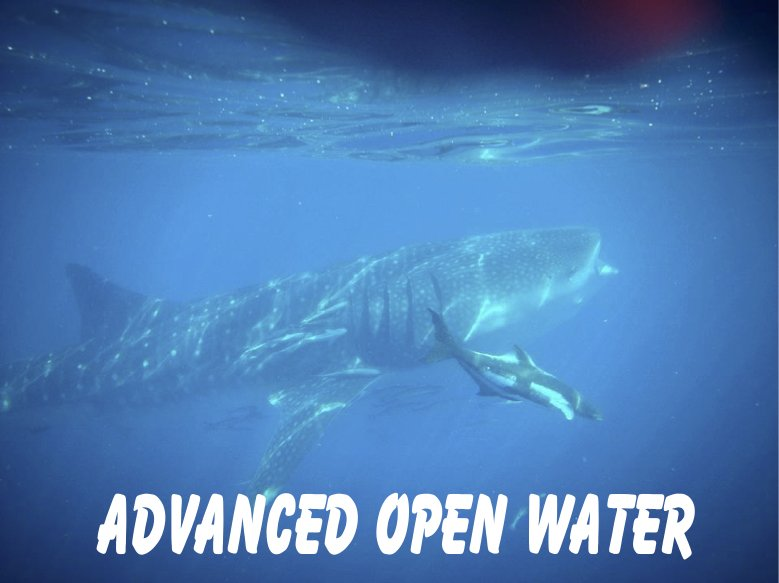 Advanced Open Water Certification Course