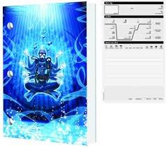 Budda Diver Logbook