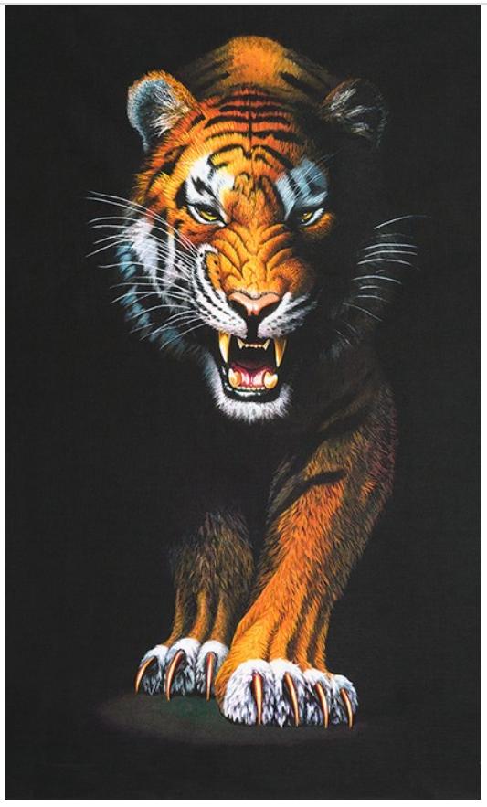 Animal Kingdom - Tiger Panel