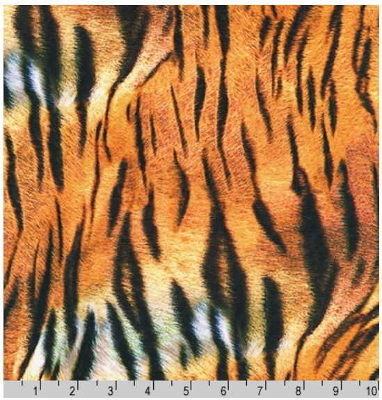 Animal Kingdom - Tiger Print