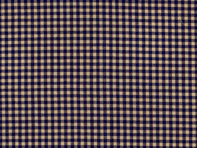 Homespun 1/8 Gingham - Blue