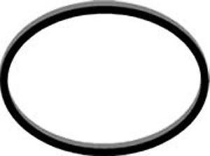 Spin Belt - WP27001007