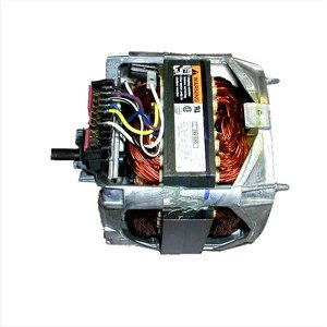 Motor Assembly - 389248