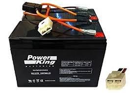 Razor Battery 24V