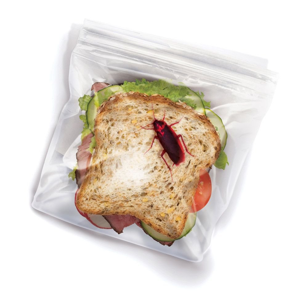 Lunch Bugs Sandwich Bags 24ct
