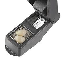 Progressive Garlic Press & Chop