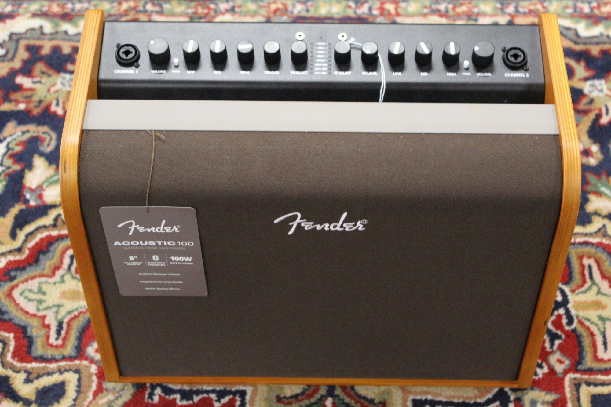 Fender Acoustic 100 120V