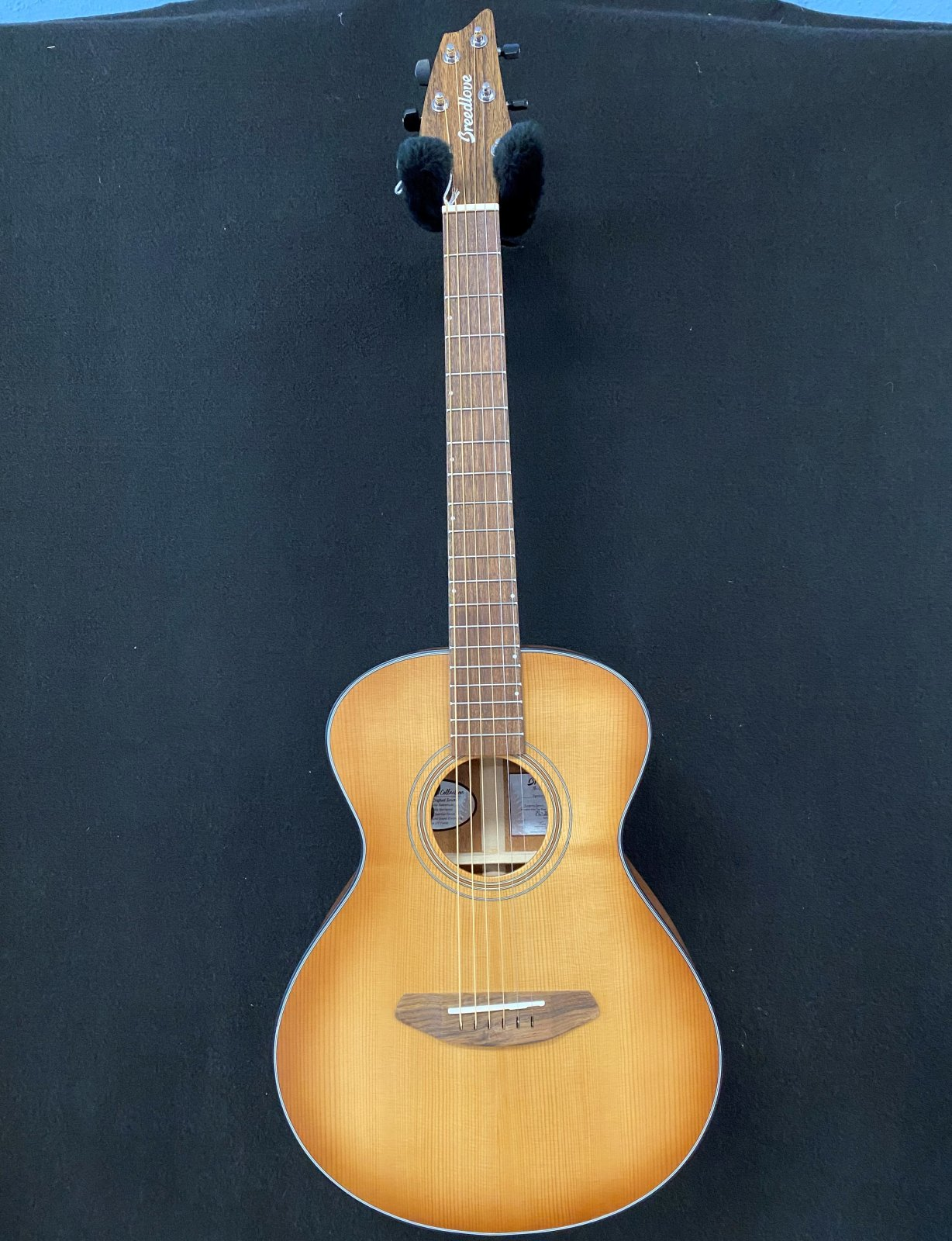 Breedlove Organic series signature Companion E
