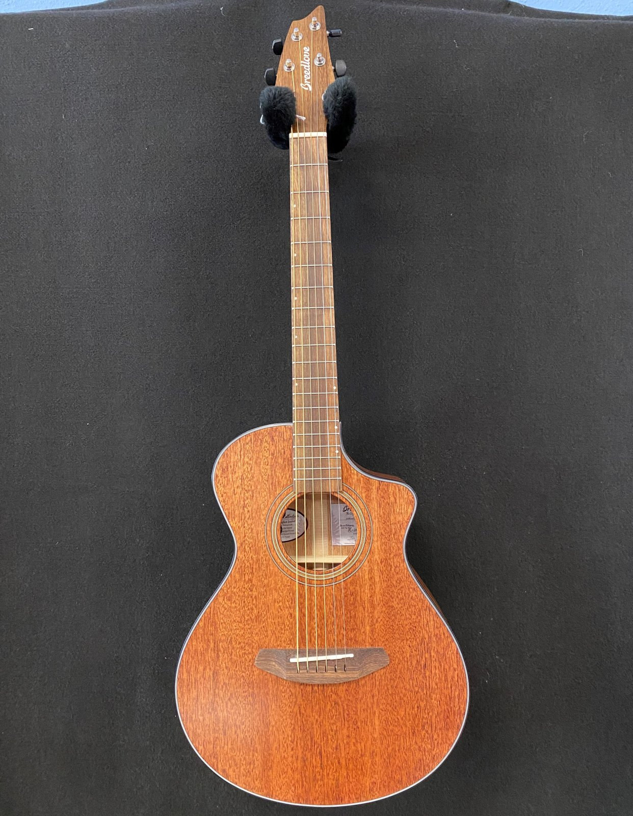 Breedlove Organic series Wildwood Companion CE