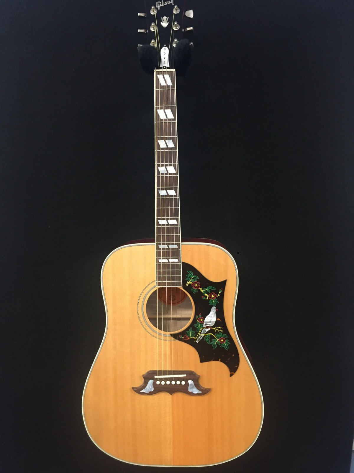 Used Gibson Dove