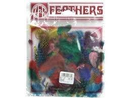 Zucker Feathers