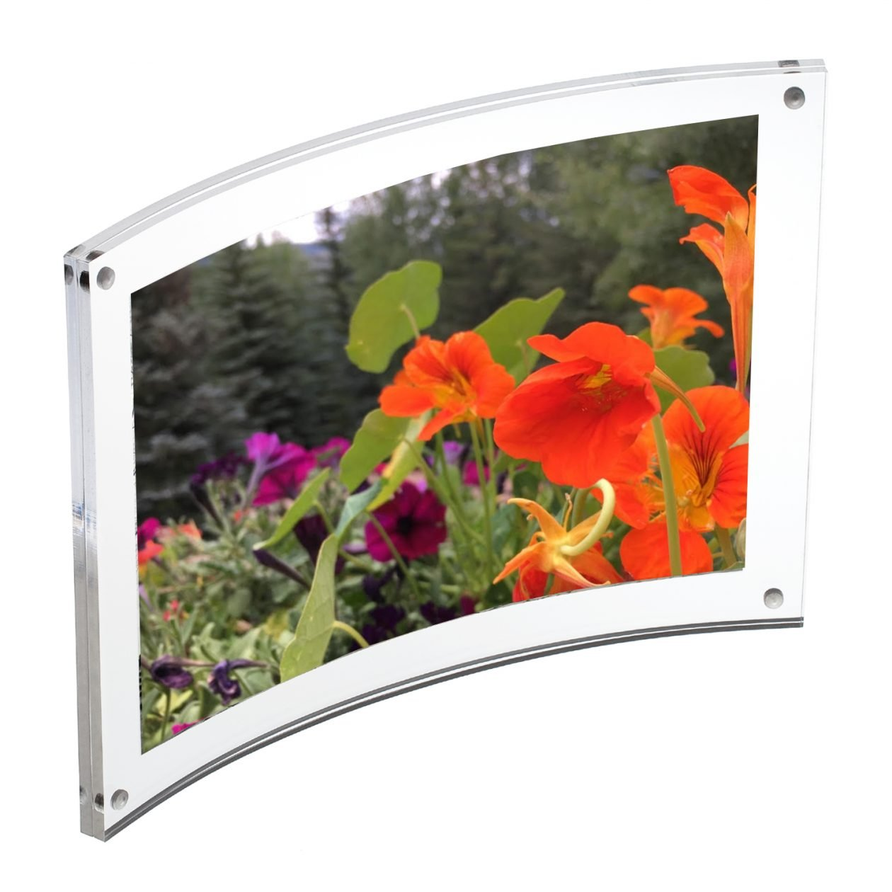 Canetti Curved Magnetic Frame - 8x10