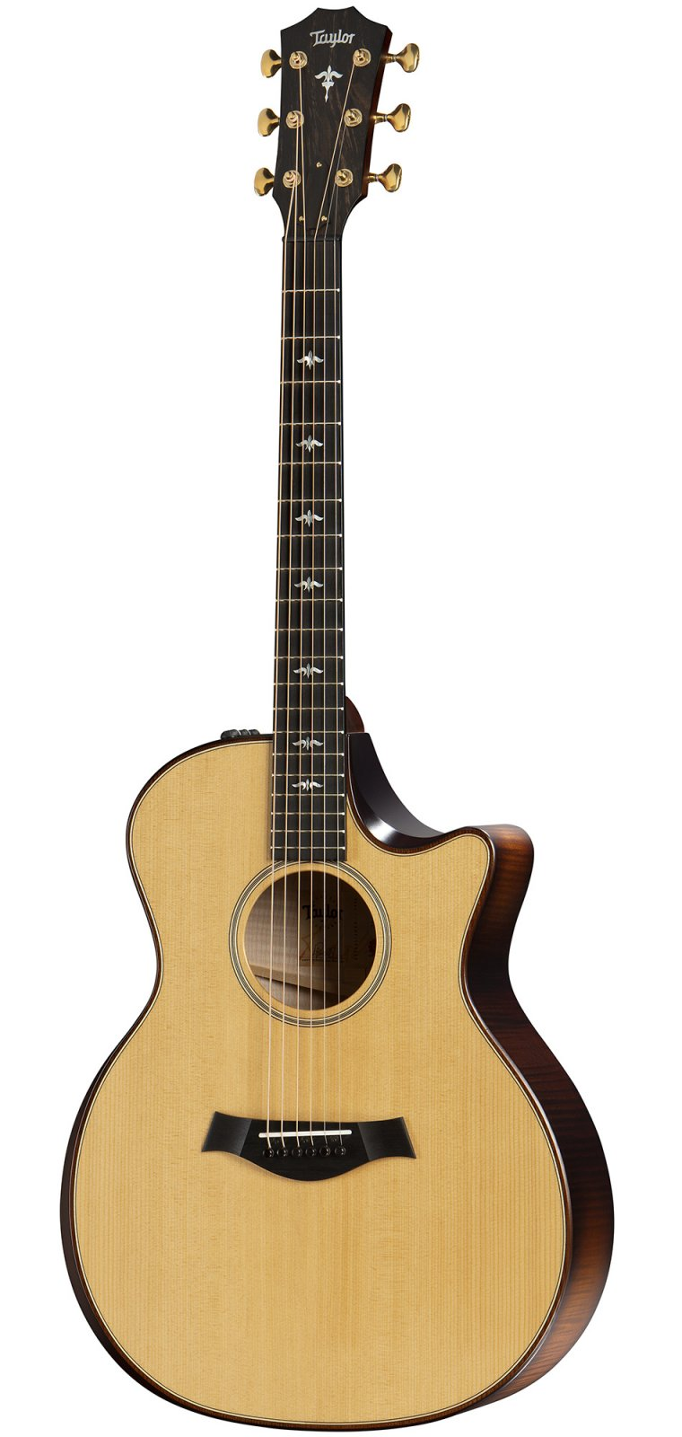 Taylor 614ce Builders Edition